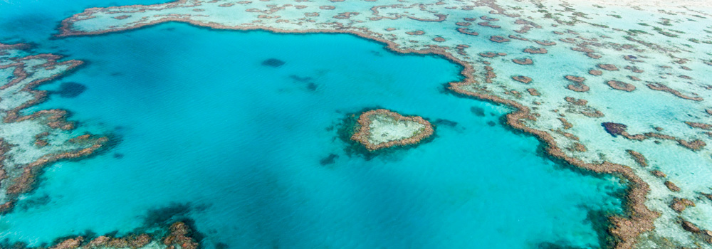 Aerial view of Hardy Reef  © WWF-Aus / Christian Miller