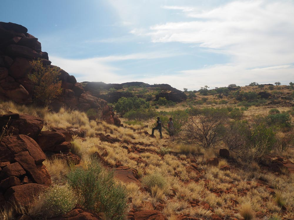Rangers standing on rocky outcrops of the Central Ranges, Western Australia © WWF-Aus / Merril Halley