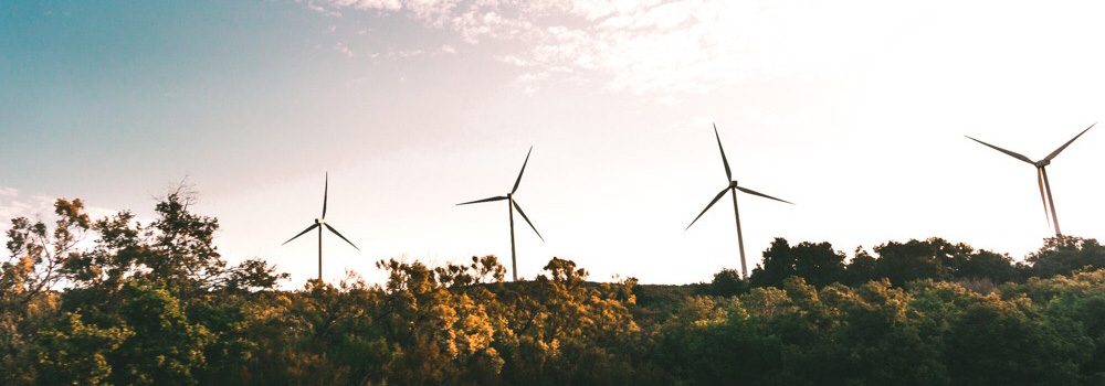 Invest in renewable energy / Photo by Snapwire on Pexels.com