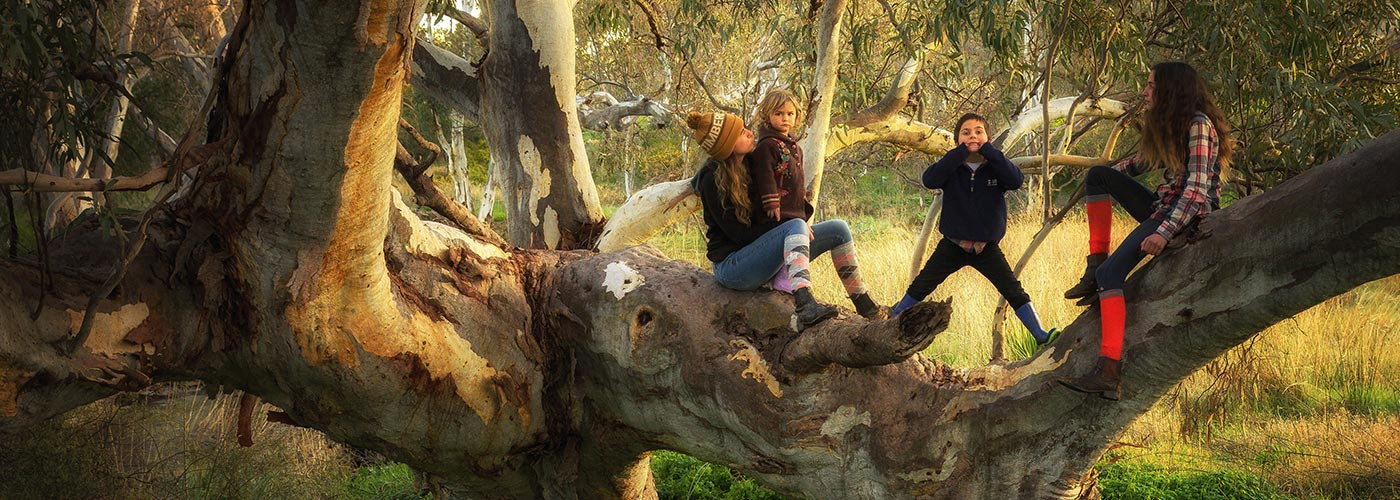 Kids playing in a tree, Harrogate, South Australia © Didi Photos / WWF-Aus