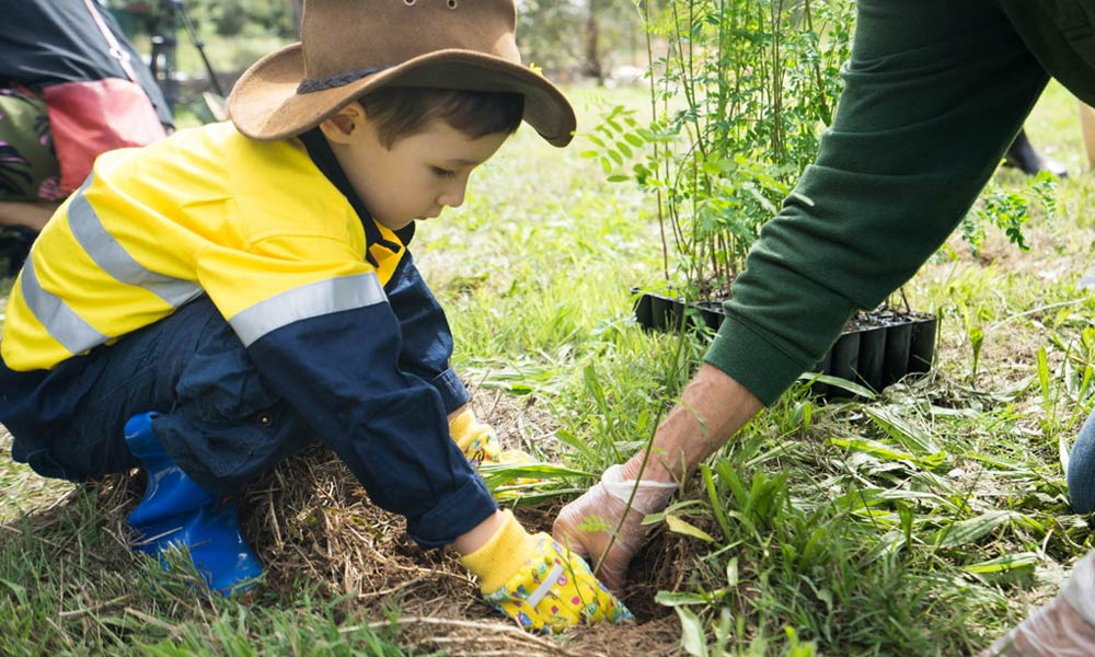 Child planting trees for Earth Hour in Australia © WWF-Aus / Leonie Sii