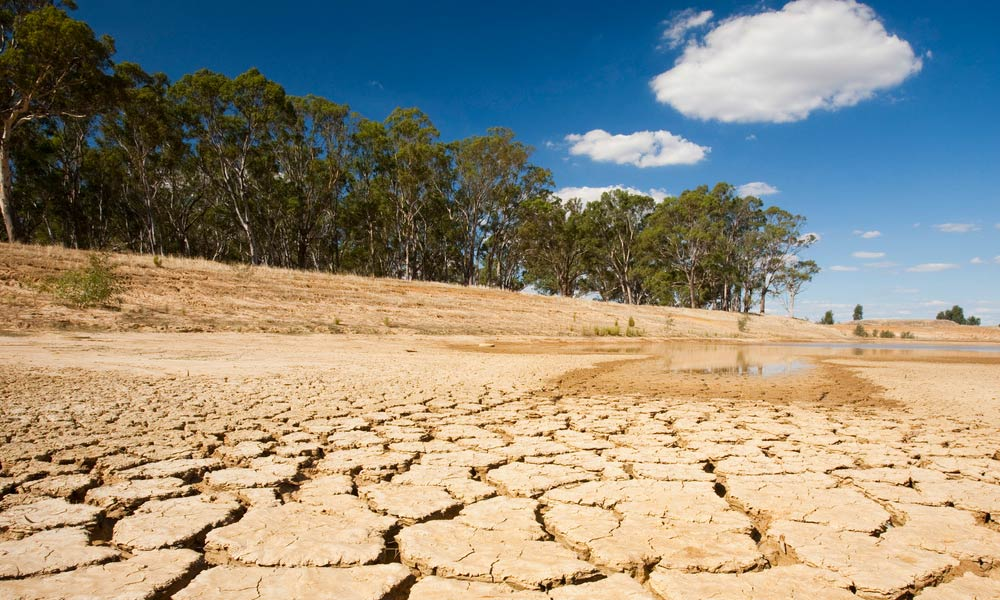 Drought impact a dried up farmer\
