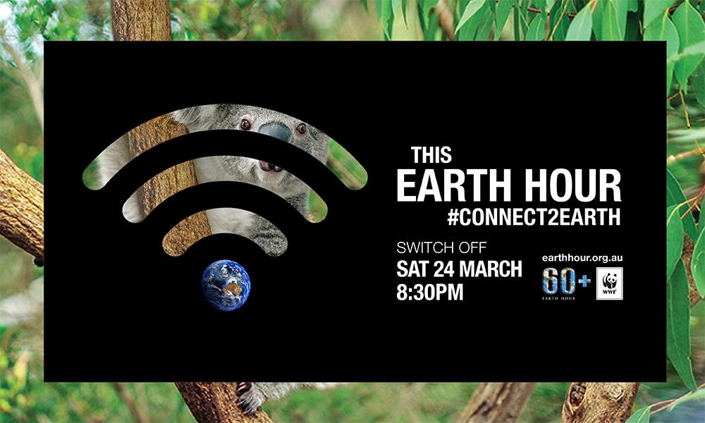 Future Cars 2020 >> Koalas and climate change - Earth Hour 2020 - Earth Hour